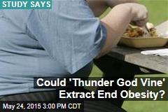 'Thunder God Vine' Could Stop Obesity