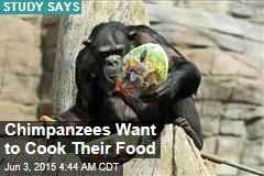 Chimpanzees Want to Cook Their Food