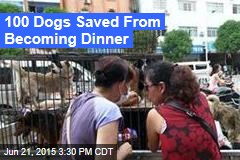 Woman Saves 100 Dogs From Dog-Meat Festival