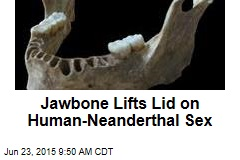 Jawbone Lifts Lid on Human-Neanderthal Sex