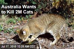 Australia Wants to Kill 2M Cats
