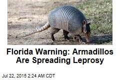 Fla. Warns That Armadillos Are Spreading Leprosy