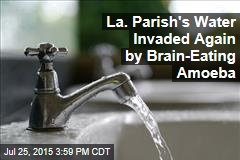 La. Parish's Water Invaded Again by Brain-Eating Amoeba