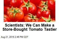 Scientists: We Can Make a Store-Bought Tomato Tastier