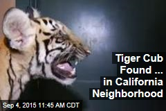 Tiger Cub Found ... in California Neighborhood