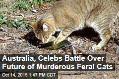 Australia, Celebs Battle Over Future of Murderous Feral Cats