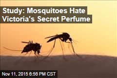 Study: Mosquitoes Really Hate Victoria's Secret Perfume