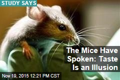 The Mice Have Spoken: Taste Is an Illusion