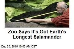 Zoo Says It's Got Earth's Longest Salamander