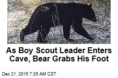 As Boy Scout Leader Enters Cave, Bear Grabs His Foot