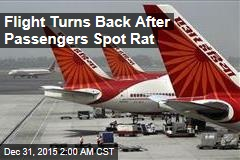 Flight Turns Back After Passengers Spot Rat
