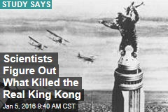 Demise of Real King Kong? Being a Picky Eater
