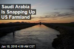 Saudi Arabia Is Snapping Up US Farmland