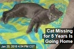 Cat Missing for 5 Years Is Going Home