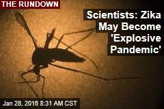 Scientists: Zika May Become 'Explosive Pandemic'