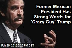 Former Mexican President Has Strong Words for 'Crazy Guy' Trump