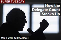 How the Delegate Count Stacks Up