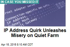 IP Address Quirk Unleashes Misery on Quiet Farm