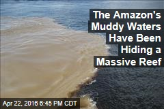 The Amazon's Muddy Waters Have Been Hiding a Massive Reef