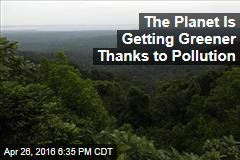 The Planet Is Getting Greener Thanks to Pollution