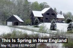 This Is Spring in New England