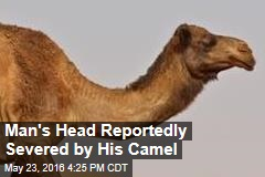 Man's Head Reportedly Severed by His Camel