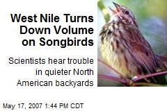 West Nile Turns Down Volume on Songbirds