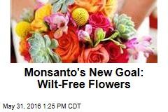 Monsanto's New Goal: Wilt-Free Flowers