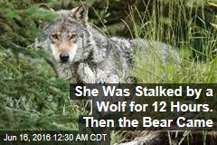 She Was Stalked by a Wolf for 12 Hours. Then the Bear Came