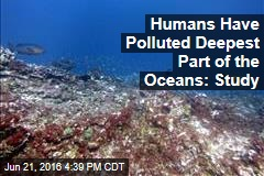 Humans Have Polluted Deepest Part of the Oceans: Study