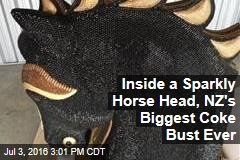 Inside a Sparkly Horse Head, NZ's Biggest Coke Bust Ever