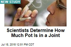 Scientists Determine How Much Pot Is in a Joint