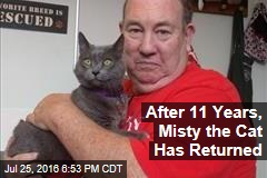 After 11 years, Misty the Cat Has Returned