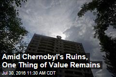Amid Chernobyl's Ruins, One Thing of Value Remains