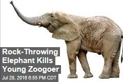 Rock-Throwing Elephant Kills Young Zoogoer