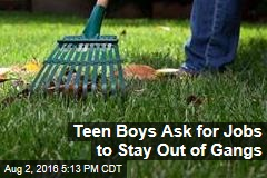 Teen Boys Ask for Jobs to Stay Out of Gangs