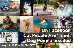 On Facebook, Cat People Are 'Tired,' Dog People 'Excited'