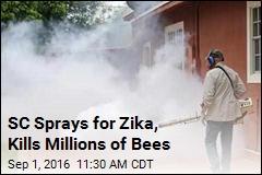SC Sprays for Zika, Kills Millions of Bees