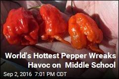 World's Hottest Pepper Wreaks Havoc on Middle School