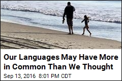 Our Languages May Have More in Common Than We Thought