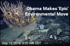 Obama Makes 'Epic' Environmental Move