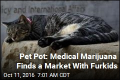 Cannabis as Catnip? The New Frontier in Medical Marijuana