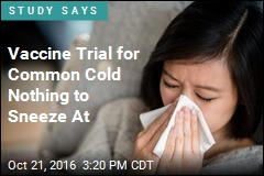 Vaccine Trial for Common Cold Nothing to Sneeze At