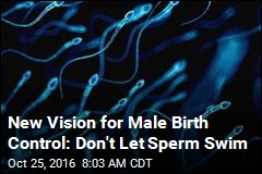 New Vision for Male Birth Control: Don't Let Sperm Swim