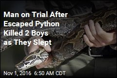 Man on Trial After Escaped Python Killed Two Boys as They Slept
