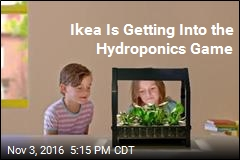 Ikea Is Getting Into the Hydroponics Game