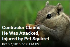 Contractor Claims He Was Attacked, Injured by Pet Squirrel