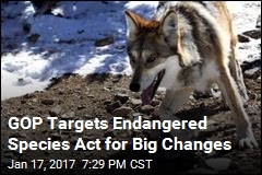 GOP Targets Endangered Species Act for Big Changes