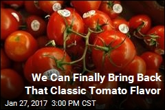 Scientists Know How to Make Tomatoes Taste Tomato-y Again