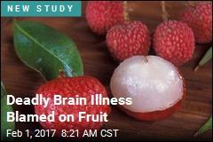 Deadly Brain Illness Blamed on Fruit
